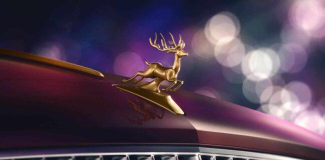 Reindeer Eight
