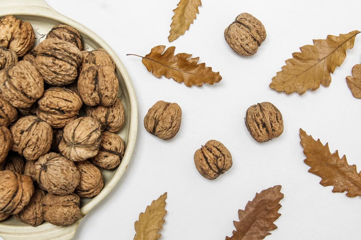 9 druhů ořechů - vlašské ořechy