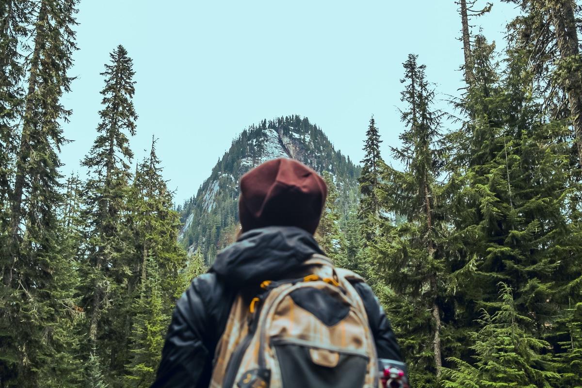 Pacific Northwest Trail - ráj medvědů grizzly