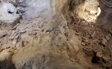 Jeskyně Grotta Guattari