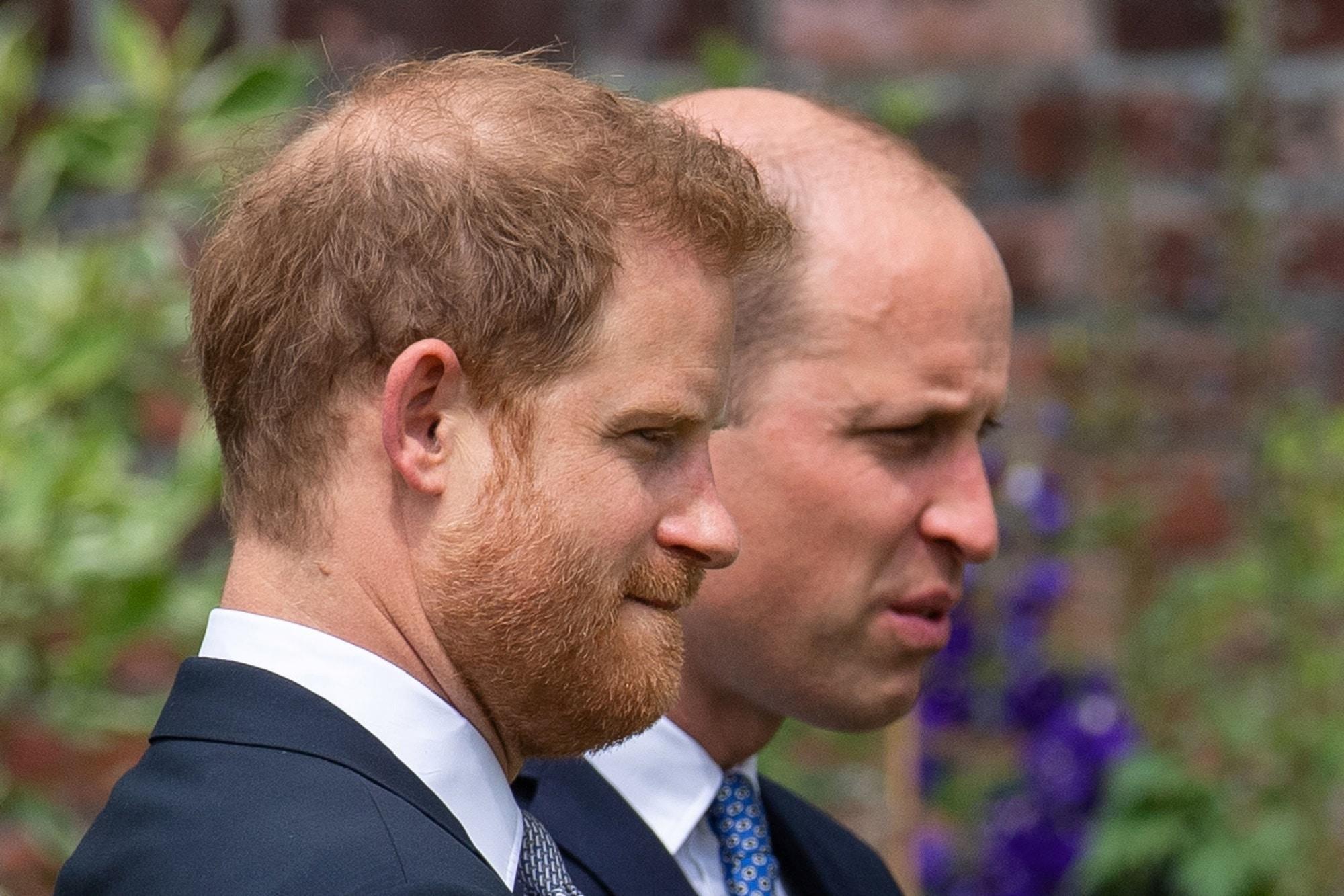 Vévoda z Cambridge a vévoda ze Sussexu