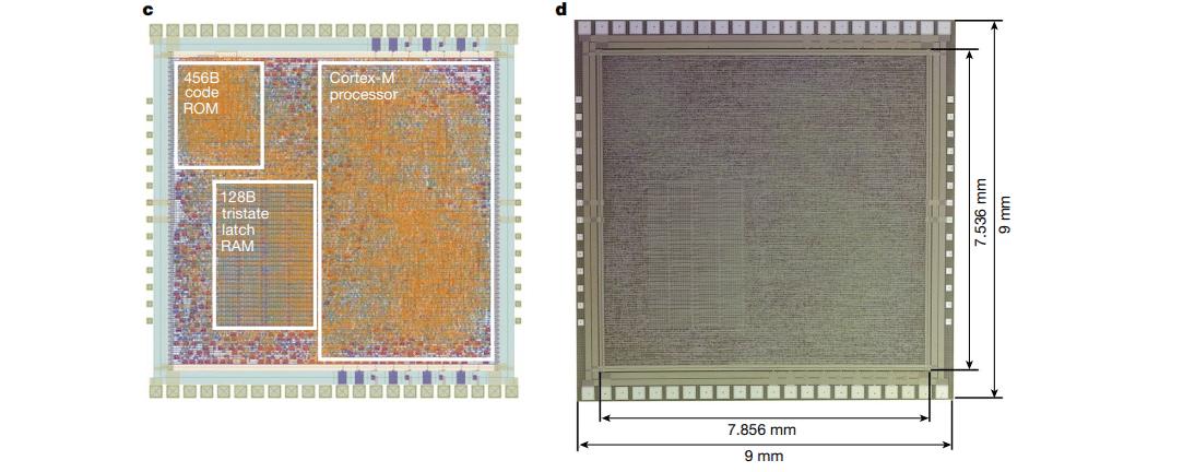 Přehled a konstrukce čipu PlasticArm. Foto: Arm
