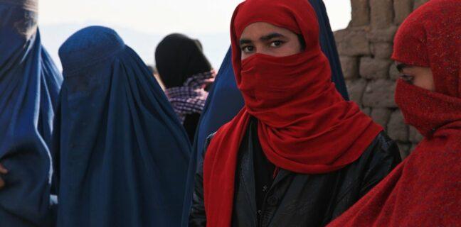 nemají kam jít Tálibán