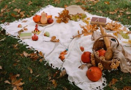 Jídlo podzim
